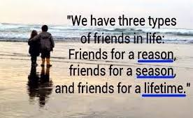 Friends for a Reason, Season or Lifetime